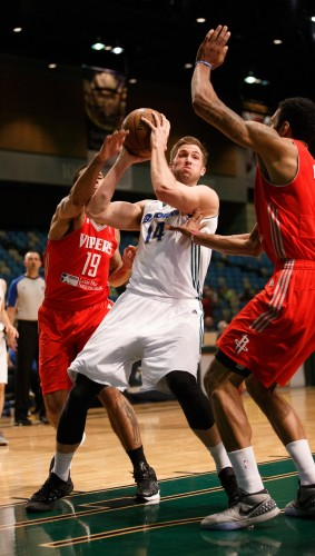 Reno Bighorn Forward DAVID WEAR