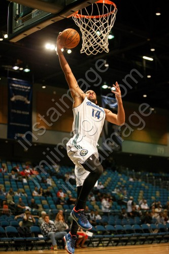 Reno Bighorn Guard MARK TYNDALE (14)