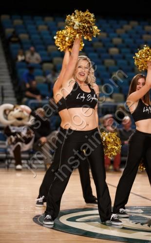 The Lady Bighorn Dancers