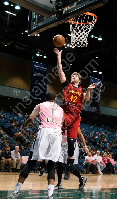 Fort Wayne Mad Ant Forward SHAYNE WHITTINGTON (42)