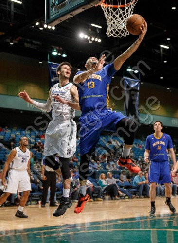 Santa Cruz Warrior Guard DARINGTON HOBSON (13)