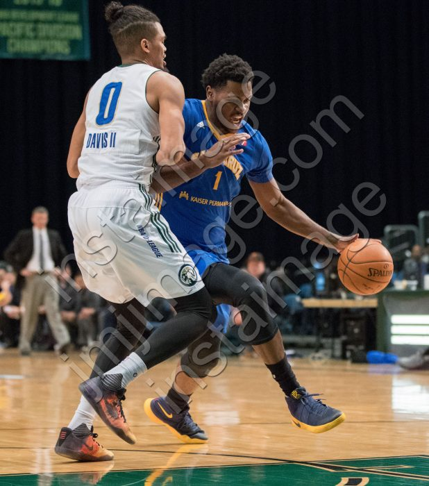 Santa Cruz Warrior Center DIAMOND STONE (1)