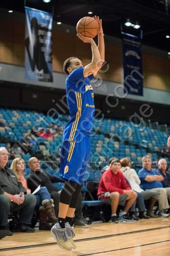 Santa Cruz Warrior Guard CAM JONES (9)