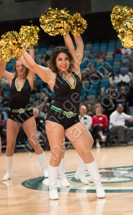 The Lady Bighorn Dancers
