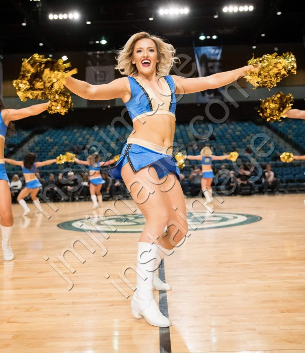 Reno Lady Bighorn Dancer