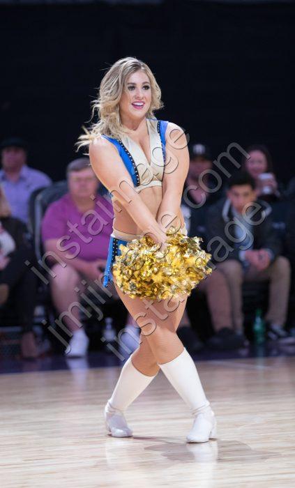 The Lady Bighorn Dancer